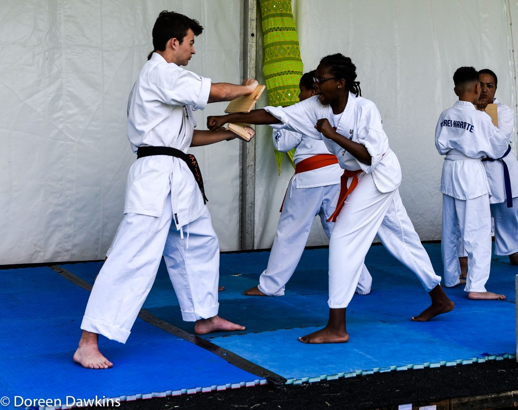 Padron Dojo, Asian Festival Martial Arts