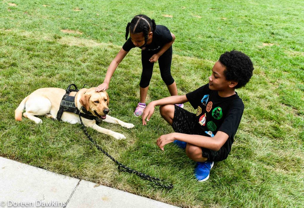 Children interacting with the Mattis K-9 of the Franklin County K-9 unit at Fam Jam 2019
